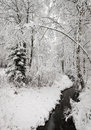 Wintry creek in the forest landscape with a finland snowy trees woods surrounding stream Stock Image