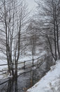 Wintry scenery surreal with snow and fog Royalty Free Stock Photos