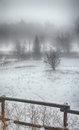 Wintry scenery surreal with snow and fog Stock Photo