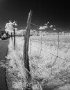Wire fence along a field deserted in infrared light Royalty Free Stock Photo