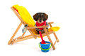 Wire haired dachshund at the beach in chair isolated over white background Stock Photography