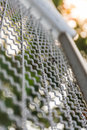 Wire mesh texture and blur green plant background Stock Image