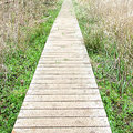 Wired decking foot path footpath over marsh land Royalty Free Stock Photo