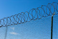 Wired fence with spiral barbwire on blue sky background Stock Photography