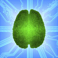 stock image of  Wired glowing brain over computer microcircuit. Artificial intelligence AI and High Tech Concept.