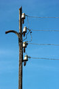 Wires and power line insulators disks on electrical pole Royalty Free Stock Photo