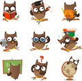 Wise owl cartoon set studying collection with nine owls in different situations like reading bachelor school calculator Stock Image