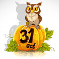 Wise owl sit on a pumpkin - Halloween Party Royalty Free Stock Photo