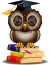 Wise owl on a stack of books Royalty Free Stock Photo