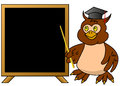 Wise owl teacher with blackboard frame or message box Royalty Free Stock Images