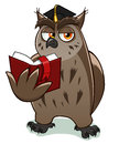 Wise owl teacher holds and reads red book Royalty Free Stock Images