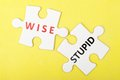 Wise versus stupid concept on two pieces of jigsaw puzzle Stock Photo
