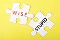 Wise versus stupid concept