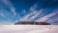 Wispy clouds over a cluster of trees and snow covered farm field fields in rural carroll county maryland Stock Photography