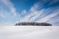 Wispy clouds over a cluster of trees and snow covered farm field