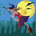 Witch on a broomstick in the air broom against moon Royalty Free Stock Images