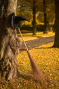 Witch hat and broom in the fall Royalty Free Stock Photos
