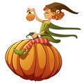 Witch on pumpkin Royalty Free Stock Images