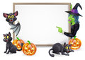 Witch and vampire bat halloween sign or banner with orange pumpkins black s cats s broom stick cartoon Stock Images