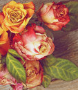 Withered roses bunch of beauty colorful with leafs closeup on rustic wooden background retro styled Stock Photos