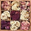 Withered roses in wooden box Royalty Free Stock Photography