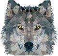 Wolf low poly face of in Royalty Free Stock Photo