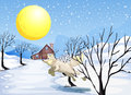 A wolf in the snow illustration of Royalty Free Stock Photography