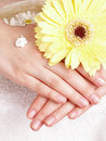 Woman applying cream to her hands Royalty Free Stock Images