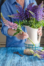 Woman arranging a bunch of flowers in a vase Royalty Free Stock Photo