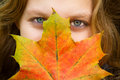 Woman with autumn leaf covered face colorful Stock Photos