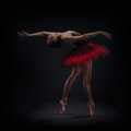 Woman ballet dancer on dark background Royalty Free Stock Images