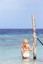 Woman in bikini standing in beautiful tropical sea happy Stock Photography