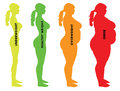 Woman Body Mass Index BMI categories Royalty Free Stock Photo