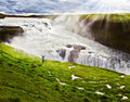 Woman and boiling abyss on the hillside thrilled looking at the powerful gullfoss in iceland Stock Images