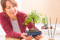 Woman with bonsai tree Royalty Free Stock Photo