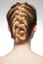 Woman with braid hairdo portrait of young beautiful blond hair and rear view hairstyle tress Stock Image