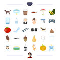 Woman, breed, animal and other web icon in cartoon style. vegetable, wedding, drink icons in set collection.