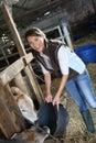Woman breeder feeding cows