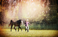 Woman and brown horse running across meadow with big trees outdoor Royalty Free Stock Photos