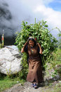 Woman carries harvest, Nepal Royalty Free Stock Photos