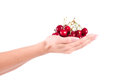 Woman with cherries on background Royalty Free Stock Images