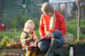 Woman and child with picnic on allotment Stock Photo