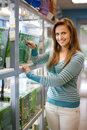 Woman chooses fish in tank at pet shop Stock Photos