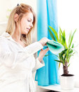 Woman clean leaves at home Stock Images