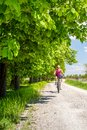 Woman cycling a mountain bike in city park, summer day Royalty Free Stock Photo