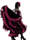 Woman dancer dancing french cancan Stock Photos