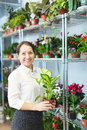 Woman with dieffenbachia in flower store mature plant Stock Photography