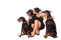 Woman with doberman elegant young three female studio shot Royalty Free Stock Photo