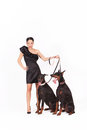 Woman with doberman young in elegant dress two female studio shot full body shot Royalty Free Stock Photo