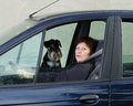 Woman and dog in car drives sitting on passenger seat Stock Photos